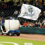 Sugar-Land-Skeeters-Baseball